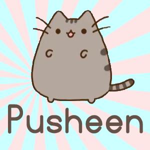 Pusheen Plush